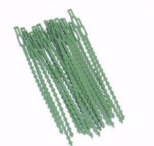 Plástico fábrica de cabos Gravatas reutilizáveis cabo laços para Tree Garden Escalada Apoio ajustável planta Jardim Amarrar Ferramenta