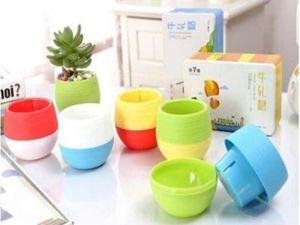 2020 Mini Round Plastic succulent Plant Flower Pot Garden Home Office desktop Decor Micro Landscape Planter unbreakable flowerpot