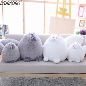 LYDBAOBO 1PC 35CM Fun Plush Fluffy Cats Persian Cat Toys Pembroke Pillow Soft Stuffed Animal Peluches Dolls Baby Kids Toys Gifts MX200716