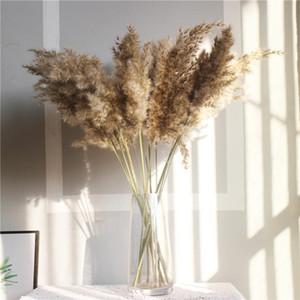 10PCS 리얼 말린 작은 팜파스 그라스 웨딩 꽃 무리 자연 식물 장식 홈 장식 꽃 말린