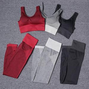 Yüksek kaliteli Marka Tasarımcı Bayan Pamuk Yoga Suit Sportwear Tracksuits Spor Tulum jimnastik Spor İki Parça seti sutyen pantolon kıyafetler koşucu