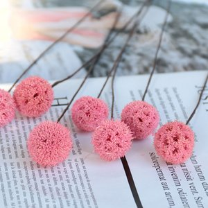 1pc Dried Flowers Natural Home Decorative DIY Accessories Creative Dried Fruit Pink Artificial Flower Photo Props Home Decor