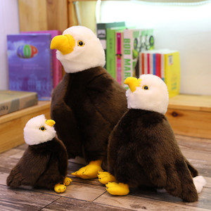 20 30 40cm realistic bird sea eagle stuffed toy simulation animal eagle plush doll children plush toy birthday gift home decoration