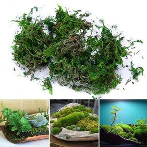 Moss artificielle Creative séchées Doublure Bonsai Décor fleurs Paniers Suspendus Jardinage Artisanat mariage jardin Décoration