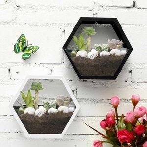 Brief Handmade Acrylic Chlorophytum Flower Pot Hanging Wall Scindapsus Hydroponics Plant Vase Home Living Room Modern Decoration Y200709