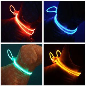 Nouveau modèle Colliers LED flash de lumière corde Hanging Accessoires pour animaux Sécurité Voyage de nuit Chiens multicouleur 2 3RZ D2 Leash
