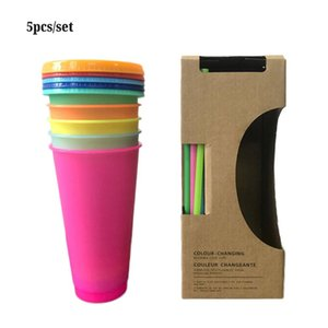 Creative 24OZ 700ml Plastic Temperature Change Color Cups Colorful Cold Water Color Changing Coffee Mug Bottles With Straws Lid Summer