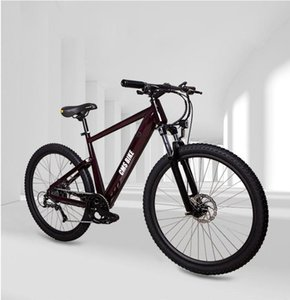 20ss Montaña autopropulsado batería de litio adultos eléctrico de velocidad variable bicicleta eléctrica scooter de bicicleta de refuerzo de la batería 1 2