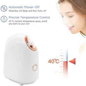 Nano Ionic Hot Spray Gesicht Steamer Maschine Ion Dampf Gesicht Sprayers Instrument Facial Moisturizer Luftbefeuchter Personal Sauna SPA Gesichts Sprayer