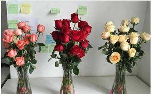 Faltbare PlastikVase Wiederverwendetes Kunststoff Indestructible Vasen für Blumen-Ausgangsdekoration Partei umweltfreundliche PVC-Blumen-Vase DHB23