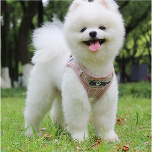 High Quality Upgraded Pet Reflective Chest Strap Breathable Seat Belt Pet Supplies Vest Type Cat Dog Leather Strap