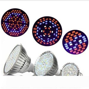Led Grow lights 30W 50W 80W Full Spectrum Led Plant Grow Lamps E27 LED Horticulture Grow Light for Garden Flowering Hydroponics System