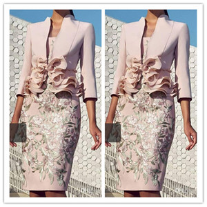 2020 Pale Pink Mother Of the Bride Dresses with 3 4 Long Sleeve Lace Ruffles Knee-length Women Formal Party Evening Guest Dress