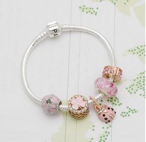 Charm Bilezik 925 Gümüş Bilezikler İçin Kadınlar Royal Crown Boncuk kelebek ve baykuş ve çiçek takılar Diy Takı yılbaşı gift18-21CM