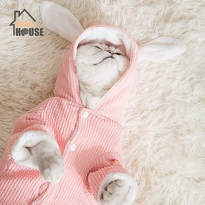 Snailhouse 2019 New Cat Clothes Simple Cute Transformed Dress Bunny Thicken Clothes Kitten Puppy Thick Winter Clothing Pet Dogs T200710