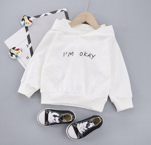 Children's wear boys' spring 2020 new children's Hooded Sweater 1-3 years old baby's Korean foreign style top generation hair style size 80-