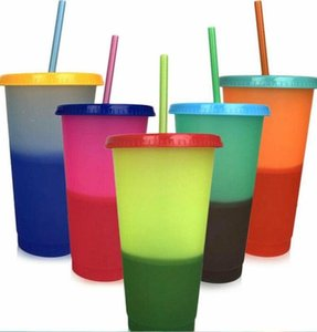 Color Changing Cup PP Material Plastic Drinking Tumblers with Lid Reusable Sensing Candy Colors Cold Cup Summer Water Bottle ALSK156