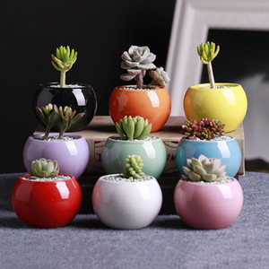 9 Colors Ceramic Pots Succulents Flower Pot Small Ball Round White Porcelain White Color Mini Creative DHB524