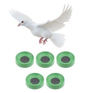 15x Plastic Pigeon Eggs Nest Birds Dehumidification Basin Supplies Breeding Bowl