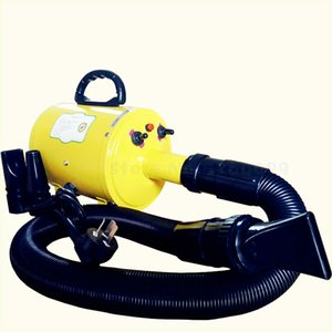 Pet Dog Blower Large Special High-power Silent Hair Dryer Electric Asciugatrice Hot Cold Air Secador Thermostatic 220V
