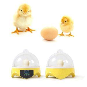 Mini 7 Ei Incubator Hatcher digitaler Klärer Temperaturkontrolle Entenvogel 110V