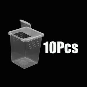 10x en plastique transparent Insectarium alimentation Box Case Container Réservoir 8x8x11cm