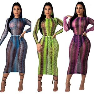 Pattern See Through Bandage Bodycon Dress Long Sleeve Skinny Party Club Dress Sexy Mesh Women Dress Fashion Snake