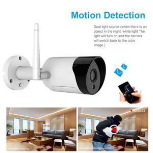 الولايات المتحدة / الاتحاد الأوروبي / المملكة المتحدة / الاتحاد الافريقي واي فاي 1080P HD ماء الأمن بطاقة SD كاميرا IP IR للرؤية الليلية 2 في اتجاه سحابة التخزين الصوت للإنذار T200724 المراقبة