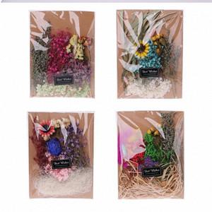 Gepresste Getrocknete Blumen Pflanze Herbarium Kid DIY Material Art Scrapbook handgemachte Karte, das Geschenk KADS #