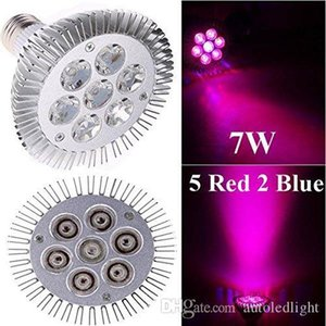 Indoor LED Grow Lights 7W 12W 24W 36W 54W E27 LED Grow Lamp PAR 38 30 Bulb For Flower Plant Hydroponics