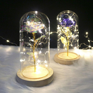Dropshipping Eternal Rose Flower in Glass Dome with LED Night Lamp Lights Christmas Birthday Gifts for Girl