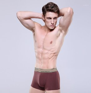 Color Designer Luxury Male Underpants Fashion Mens Underwears Clothing Sexy Slim Mens Boxers Hommes Solid