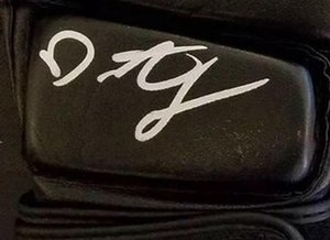 Demetrious Johnson signed autographed Glove