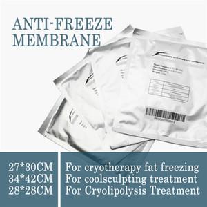 Taşınabilir Cooltech Vücut Yağ Donma Makinası Cryo Makine Hücre Serin Zayıflama Makinası İçin Evde Kullanım ile 20Pcs Membranlar Antifriz
