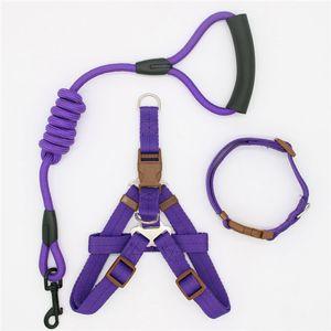 laisse chien de traction corde harnais pour animaux pour les petits et gros chien Pull réglable Dog Leash Gilet classique Courir Leash Collier de dressage et harnais
