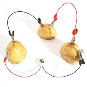 eaching Kaynakları Fizik 1SET Basit DIY Bilimsel Deney Meyve Jeneratör Yaratıcı Çocuklar Fizik Öğretim Kaynakları Komik Okul Oyuncak ...