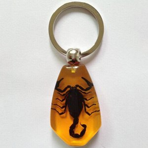 Creativo ambrato Keychain di cristallo dell'insetto portachiavi Outdoor Key anello di modo regali di compleanno accessori per l'uomo le donne DBC DH1009