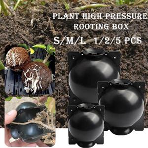 تأصيل النبات ينمو صندوق ارتفاع ضغط مصنع زهرة تأصيل تزايد حقيبة تربية الحال بالنسبة لحديقة