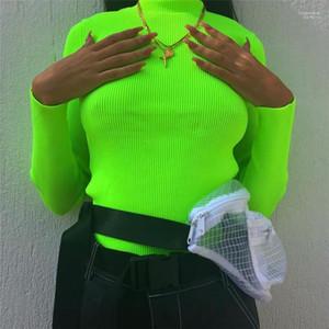 Autumn Slim Long Sleeve Rib Stitch Sweater Fashion Casual Womens Sweater Womens Designer Turtle Neck Sweater Spring
