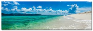 NICOLESHENTING Hawaii Sea Beach Art Silk Poster Большой печати 24x77 дюймов небо облака пейзаж стена Фото Гостиная Декор номеров