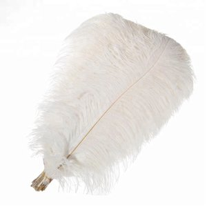 50 -55cm White Ostrich Feather 20 -22inches Ostrich Plumes Feather For Wedding Centerpiece Party Event &Party Supplies Many Colors And Sizes
