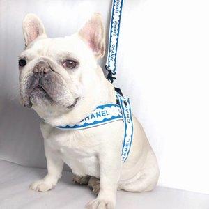 Collare di cane guinzagli parte posteriore della cassa Pettorine Moda Teddy Schnauzer regolabile Strap Vest Collare guinzagli per cani Pettorine Forniture QWE1