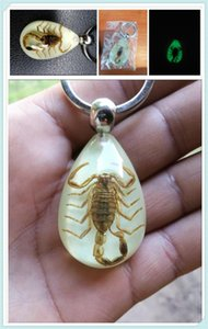 Car motorcycle light insect keychain scorpion key ring for 918 Cayman 919 718 GT3