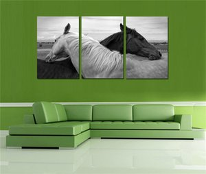Black & White Horse,3 Pieces HD Canvas Print Home Decor Art Painting  (Unframed Framed)