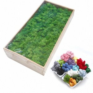 20G naturale Muschio Pianta artificiale eterna Moss giardino della casa della decorazione DIY Flower Material Micro Paesaggio Accessori ArKX #