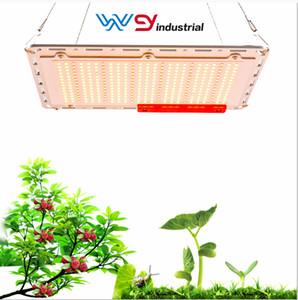 WY 직접 삼성 5730 3500K + 660 LED 성장 빛 양자 보드 120w 수경 전체 스펙트럼 상업적 재배 시스템