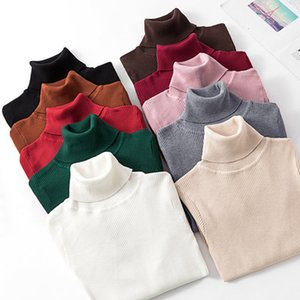 Autumn Winter Knitted Pullovers 2020 Turtleneck Sw