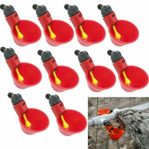 20 Pcs Frango Copo Drinking automática bebedor Frango alimentador plástico Poultry Água Potável Cups Fácil instalação com parafusos