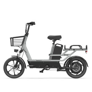 16-Inch Two Wheels Electric Bike City Transport W1 Car Work Pasto asportabile consegna Nuova Nazionale Standard Electric Car Takeaway
