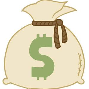 Один доллар ссылается на VIP, чтобы заполнить разницу в цене Дополнительная плата с DHL EMS Доставка логистики VIP